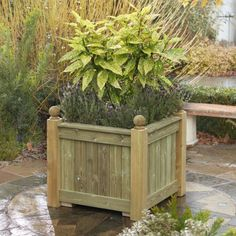 Winsome Buy Grange Fencing Contemporary Rectangular Garden Planter At  With Extraordinary Versailles Planter Made From Quality Wood Bespoke Designs Are Available To  Suit Your Garden Or With Appealing Secreat Garden Also The Round House Covent Garden In Addition Hilton Garden Inn Oklahoma City And Chiba Garden As Well As Garden Inn Hilton Additionally Garden Rooms Dublin From Pinterestcom With   Extraordinary Buy Grange Fencing Contemporary Rectangular Garden Planter At  With Appealing Versailles Planter Made From Quality Wood Bespoke Designs Are Available To  Suit Your Garden Or And Winsome Secreat Garden Also The Round House Covent Garden In Addition Hilton Garden Inn Oklahoma City From Pinterestcom