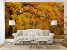 Items similar to Aspen forest trees mural wallpaper, repositionable peel & stick wall paper, wall covering on Etsy Of Wallpaper, Peel And Stick Wallpaper, Outdoor Sofa, Outdoor Furniture Sets, Outdoor Decor, Tree Wall Murals, Removable Wall Murals, Autumn Forest, Room Planning