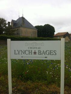 Les vignes de Lynch Bages
