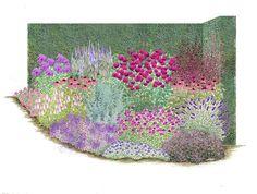 Orientalischer Zauber 1 Artemisia absinthium (Edelraute) 1 Campanula x punctata (Glockenblume), rosa   2 Echinacea purpurea (Sonnenhut), rosa 1 Foeniculum vulgare 'Atropurpureum' (Fenchel) 2 Geranium x gracile (Storchschnabel), blau 1 Globularia cordifolia  (Kugelblümchen) 1 Gypsophila Repens-Hybr. (Schleierkraut), rosa 1 Lavandula angustifolia (Lavendel) 1 (Katzenminze) 1 (Flammenblume), blau-violett 1 (Scheinwaldmeister), rosa 1 Rosa 'Rose de Resht' (Strauchrose) 1 (Ehrenpreis), rosa/lila