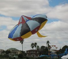 Inflatable Kites. The big UFO kite of the Adelaide Kite Festival in South Australia. For several years, it hovered over the sand at a very low level for almost the whole festival. The reason for the low height was that it's shade was often the official commentary area! T.P. (my-best-kite.com)