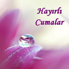 en_guzel_anlamli_cuma_mesajlari_sayfasi_burada_20_kasim_h7833.jpg (400×399)