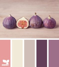 So pretty. Onion flowers are this gorgeous violet, and figs shown here have a variety of summer brights.
