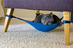 Ingenious Hammock Like Cat Crib Perfectly Blending in Small Homes