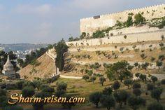 2 Tagesausflug nach Jerusalem und Petra von Sharm El Sheikh, fahren Sie mit dem Bus nach Israel, besichtigen Sie die heilige Stadt Jerusalem und Bethlehem, wo Jesus geboren wurde, Schwimmen Sie im Toten Meer und am nächsten Tag wandern Sie in Petra und besichtigen Sie die wunscherschöne Sehenswürdigkeiten dort. http://www.sharm-reisen.com/2-tagesausflug-nach-jerusalem-und-petra-von-sharm-el-sheikh