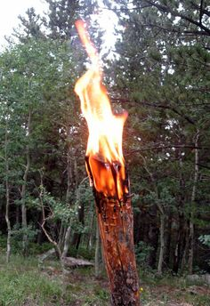How to make a Pine Knot Torch for emergency light