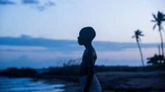 Image copyright                  David Bornfriend                                                                          Image caption                                      Moonlight only took 25 days to film and is now a frontrunner for Hollywood awards                                It's been hailed by critics as diverse film-making at its best, but the