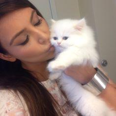 "244k Likes, 2,845 Comments - Kim Kardashian West (@kimkardashian) on Instagram: ""Kisses kitty """