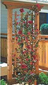 Two in one! Flower trellis use two and run line between them for a clothes line