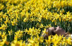 Il risveglio della primavera   4Gaia – Madre Terra