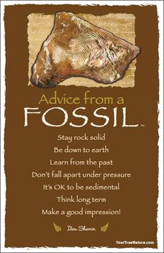 Advice from a Fossil