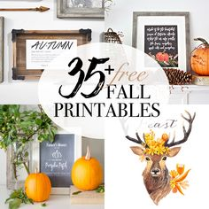 A Halloween entryway potion printables, and dictionary skull art along with 35 free fall printables and vignettes from home decor bloggers.