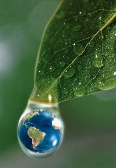 Small World.The only planet known to have signs of life. Earth the world inside one water dew drop dewdrops dangling from tips of a green leaf leaves, Earth Day, Planet Earth, Mother Earth, Mother Nature, Save Our Earth, Fotografia Macro, Small World, Go Green, Belle Photo