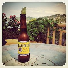 Cerveza Pacífico Clara!  Just add a lime and you are good to go. Check out my review!