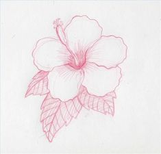 Flower Drawing How to Draw Hawaiian Flowers Flower Step By Step, Step By Step Drawing, How To Draw Flowers Step By Step, Flower Sketches, Art Sketches, Drawing Flowers, Easy To Draw Flowers, Easy Flower Drawings, Plant Drawing