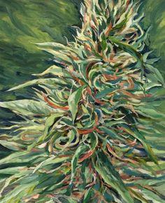 Marijuana Painting - Super Silver Haze by Mary Jane Weed Plants, Stoner Art, Weed Art, Psy Art, Plant Painting, Dope Art, Psychedelic Art, Art Inspo, Skull Art
