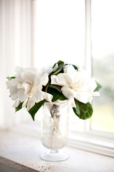Southern Stems: Gardenias « Southern Weddings Magazine