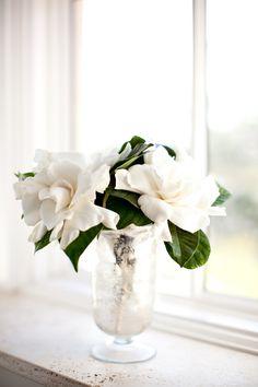 Southern Stems: Gardenias « Southern Weddings Magazine