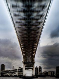 growing bridge
