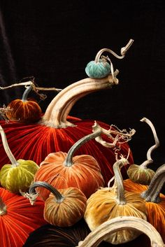 Velvet Pumpkins with Natural Stems - Lovely color choices!