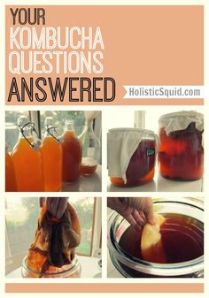 Lots of good info here! Has My Scoby Gone Bad And other Kombucha questions answered… - Holistic Squid Kombucha Scoby, Kombucha Recipe, Making Kombucha, Kombucha Drink, Kombucha Brewing, Paleo, Raw Food Recipes, Healthy Recipes, Probiotic Drinks