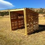 Simple wooden pallet animal shelter. Stretch it out with more pallets and voila! Instant shelter for livestock! Portable too...