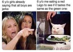 "'Two Women Yelling At A Cat' Memes Are Overly Aggro - Funny memes that ""GET IT"" and want you to too. Get the latest funniest memes and keep up what is going on in the meme-o-sphere. Cat Memes, Dankest Memes, Cosby Memes, Funny Jokes, Hilarious, Funny Sarcastic, Funny Laugh, Top Funny, Funny Tweets"