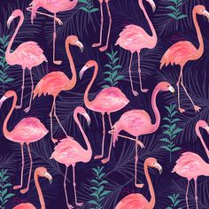 flamingo print - This should be in your bathroom... oh. ;)