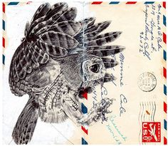 Mark Powell - hunting owl, on an airmail envelope - ballpoint pen drawing