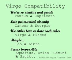 Best mate for virgo