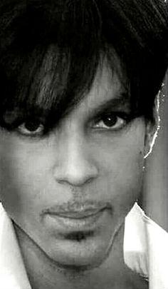 ♥ Prince
