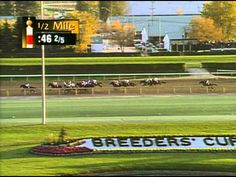 1996 Breeders' Cup Classic: Cigar is denied in a wild finish in his final race.