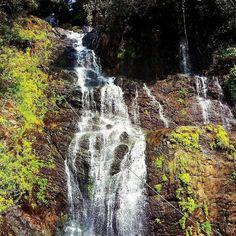 #waterfall #waterfalls #chasingwaterfalls #waterfallbraid #waterfallsfordays #miniwaterfall #waterfallhike #waterfallthemusical #everyteardropisawaterfall#green #gogreen #greenery #greensmoothie #greenthumb #greenbeauty #greenlife #greengrass #greenpoint #greenpeace
