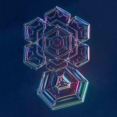 PrintCollection - Snowflake 002.3.13.2014