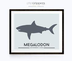 Megalodon shark dinosaur print Boys Dinosaur Bedroom, Shark Bedroom, Shark Nursery, Dinosaur Nursery, Bedroom Boys, Dinosaur Dinosaur, Dinosaur Prints, Bedrooms, Boys Room Decor