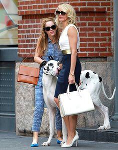 """Leslie Mann y Cameron Diaz en el set de """"The Other Woman"""" en NYC junto a un gran danés ¿Será que pronto se unirá Nicki?"""