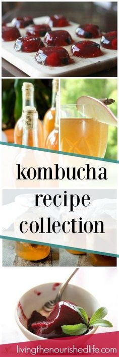 Here are the top kombucha recipes for probiotic lovers everywhere - at livingthenourishedlife.com