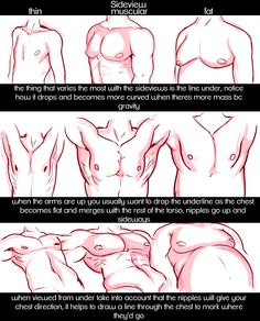 male chests by raspbeary 2/3