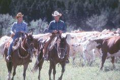 """""""""""The Horse Whisperer'' Kristin Scott Thomas & Robert Redford"""