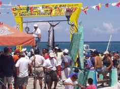 Puerto Morelos annual spring fishing tournaments