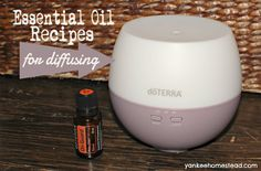 Essential Oil Recipes for Diffusing | Yankeehomestead.com
