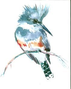 Belted Kingfisher, 10 X 8 in, original watercolor painting by ORIGINALONLY on Etsy https://www.etsy.com/listing/293958457/belted-kingfisher-10-x-8-in-original