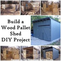 Build an Amazing Wood Pallet Shed DIY Project - 25+ garden pallet projects - NoBiggie.net