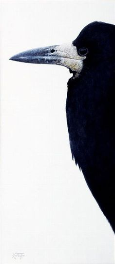 Bird Profile's - Karl Taylor Contemporary Art