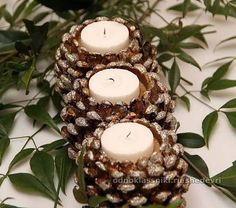 17 Easy DIY Holiday Candle Holders – 37 super easy diy christmas crafts ideas for best and easy rangoli designs for diwali festival part coconut candle holders Pine Cone Art, Pine Cone Crafts, Christmas Projects, Holiday Crafts, Diy Christmas, Fall Crafts, Natural Christmas, Rustic Christmas, Christmas Crafts With Pinecones