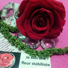 Roses stabilisées Donnez une touche élégante et raffinée à votre intérieur avec les fleurs stabilisées ! La stabilisation consiste à remplacer la sève de la fleur ou la plante par un mélange à base de glycérine, produit 100% naturel. Ces végétaux conservent leur souplesse et fraîcheur naturelle sans aucun entretien pendant plusieurs années. http://www.artifleurs-fleurs-artificielles.com/boutique/fleurs-naturelles-preservees/