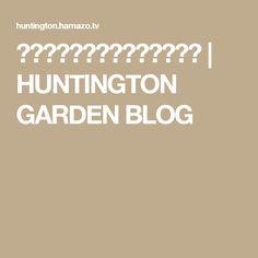 シンプルでかわいい感じの門柱 | HUNTINGTON GARDEN BLOG