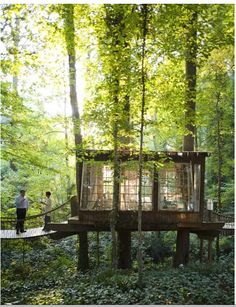 Tree House Institute. Family-friendly cabins are hidden away in the tops of trees for a truly unique experience.  With zip lines, horseback riding, rafting, and more- there's something for everyone to enjoy!