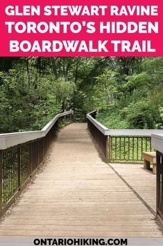 You'd hardly believe that this scenic hiking trail is in the middle of Toronto! The Glen Stewart Ravine is a hidden forest oasis with an elevated boardwalk. It's a lovely hike with a canopy of trees overhead, and one of the best places to walk and explore nature in Toronto.   #Toronto #Ontario #Canada #Hiking #Trails  Best hikes in Toronto | Hiking in Toronto | Toronto Hiking Trails | Toronto Walks | Toronto Walking Paths | Toronto Boardwalk | Toronto Ravine | Toronto Park | Ontario Hiking