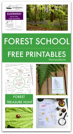 Free Back To School Printables for Forest School Free Printables for Forest School – easy forest school activities Outdoor Education, Outdoor Learning, Kids Education, Education Logo, Outdoor Play, Forest School Activities, Nature Activities, Stem Activities, Summer Activities